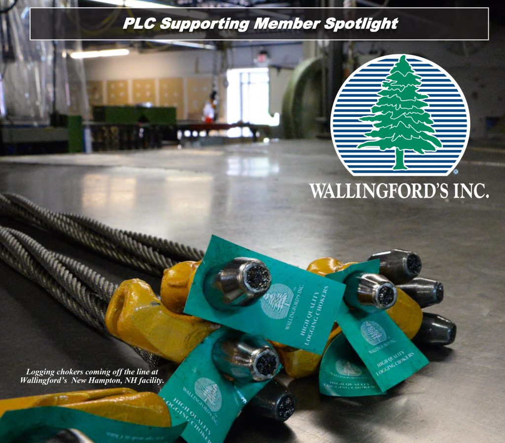 PLC Supporting Member Spotlight Article Cover